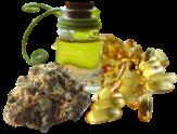 cbd plant oil capsules